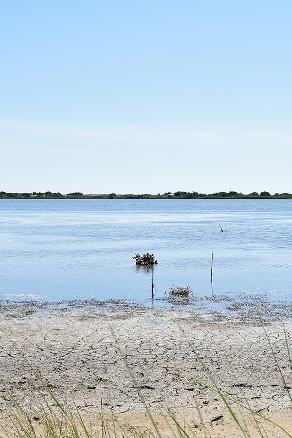 Bioporos organic farm - lagoon
